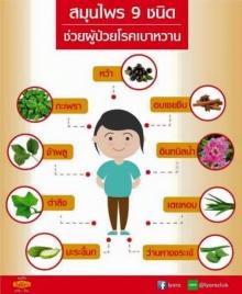 สมุนไพร 9 ชนิด ช่วยผู้ป่วยโรคเบาหวาน