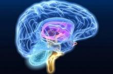ดูแลสุขภาพและสมอง ในแบบหมอสมอง
