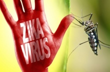 ไวรัสซิกา ไข้ซิกา โรคติดต่อที่ไร้วัคซีนป้องกัน ภัยเงียบจากยุงลาย