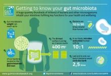 ประโยชน์ดีๆที่มาจากโปรไบโอติกในร่างกายเรา